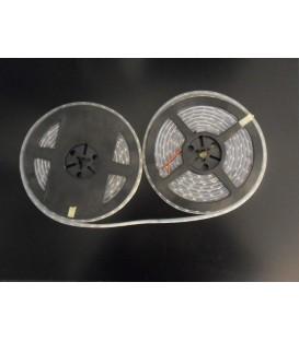 Striscia led IP68 24V taglio ogni 10 cm impermeabile luce bianco freddo